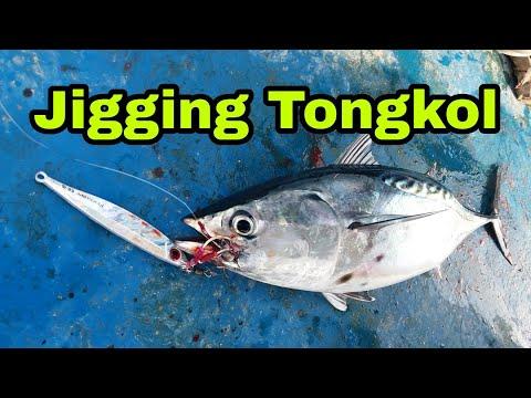 Trip Unjam Penang- Jigging Ikan Tongkol/Tuna