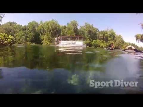 Drift Diving the Rainbow River in Dunnellon, Florida