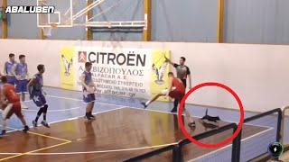 Γάτα μπουκάρει σε αγώνα μπάσκετ, την πατάει παίχτης και χορεύει breakdance | Luben TV