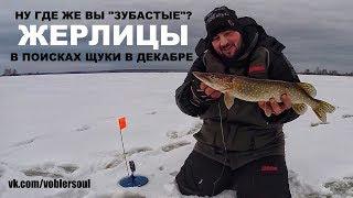 Жерлицы на щуку. Зимова риболовля. Відео звіт грудень 2017.