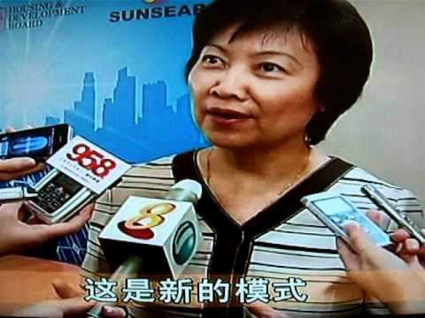 Sunseap Leasing 1st Solar Leasing Project with HDB in Punggol - Channel 8 News in Mandarin