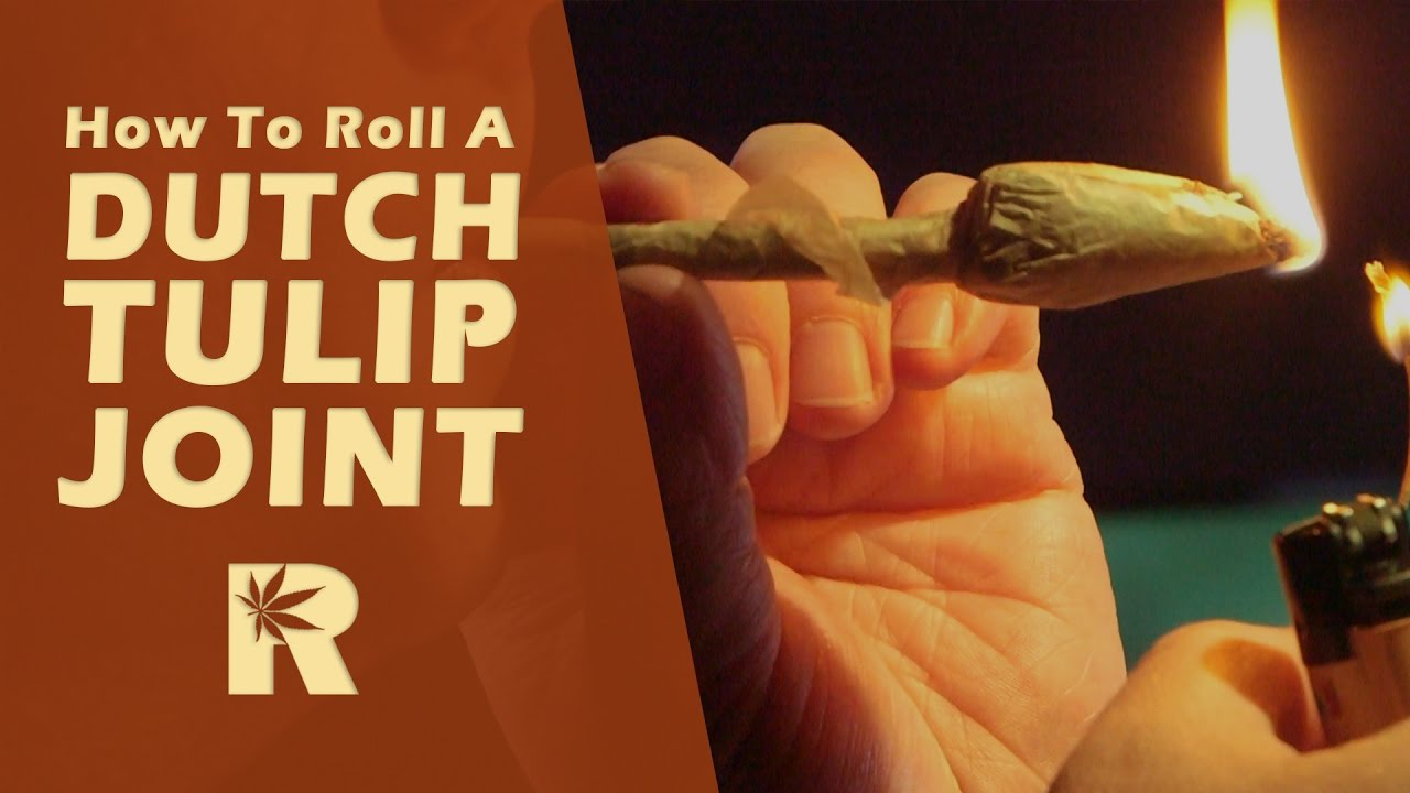 How To Roll A Dutch Tulip Joint: Cannabasics #21 - YouTube