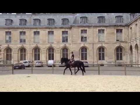 Versailles Academy of Equestrian Arts