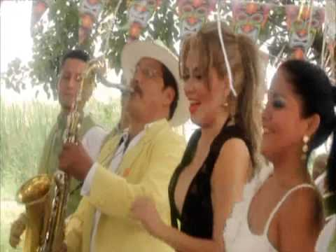 Sharon Y Franklin Band Dolencias Dvj Le