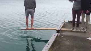Задорная рыбалка / Playful fishing