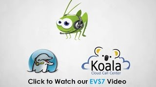 Dialer Software & Virtual Call Center by Electronic Voice Services