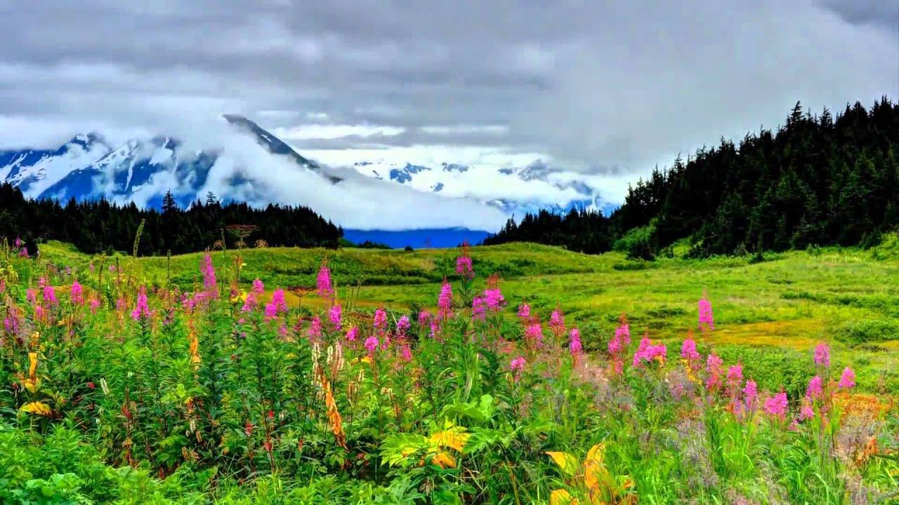 Alaska Summer 2012 Timelapse - YouTube