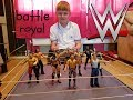 wwe toys batle royal usa