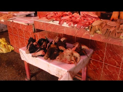 Viaggio in Marocco Agadir visitiamo la parte Antica  e la Medina Vera No Turistica