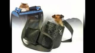 сумки переноски для больших собак