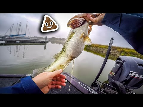 I CAN'T BELIEVE This Fish Did THAT (Lake Ray Hubbard Crankbait Fishing)