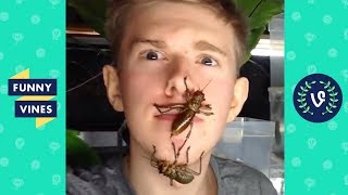 Try Not To Get Scared or Flinch Challenge Compilation 2017 | Funny Vine