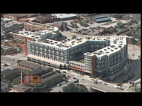 New Apartments Bring Luxury With Creative Flair To Locust Point