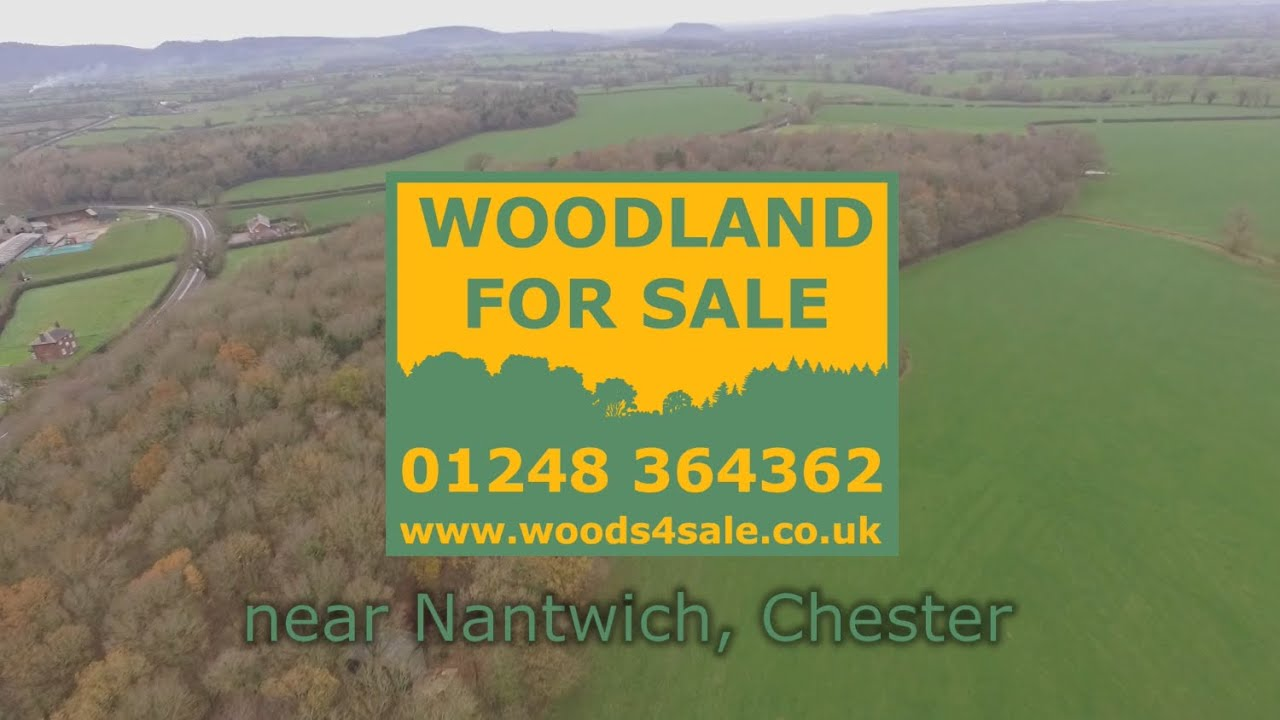 Woods4Sale Chesterton Wood for Sale near Nantwich, Cheshire