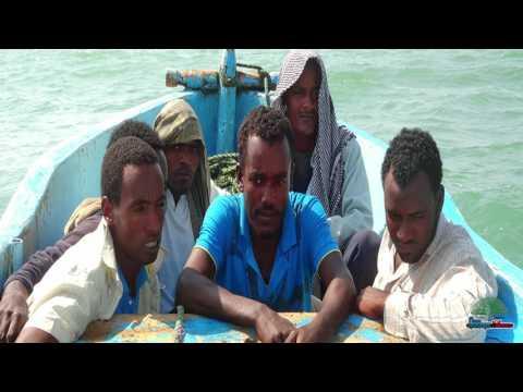 New Afaan Oromo Music Hanisha Solomon Geerarsa