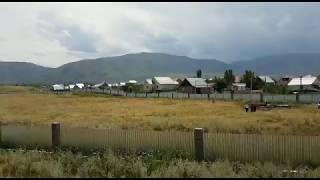 Появились видео с места крушения самолета под Алматы