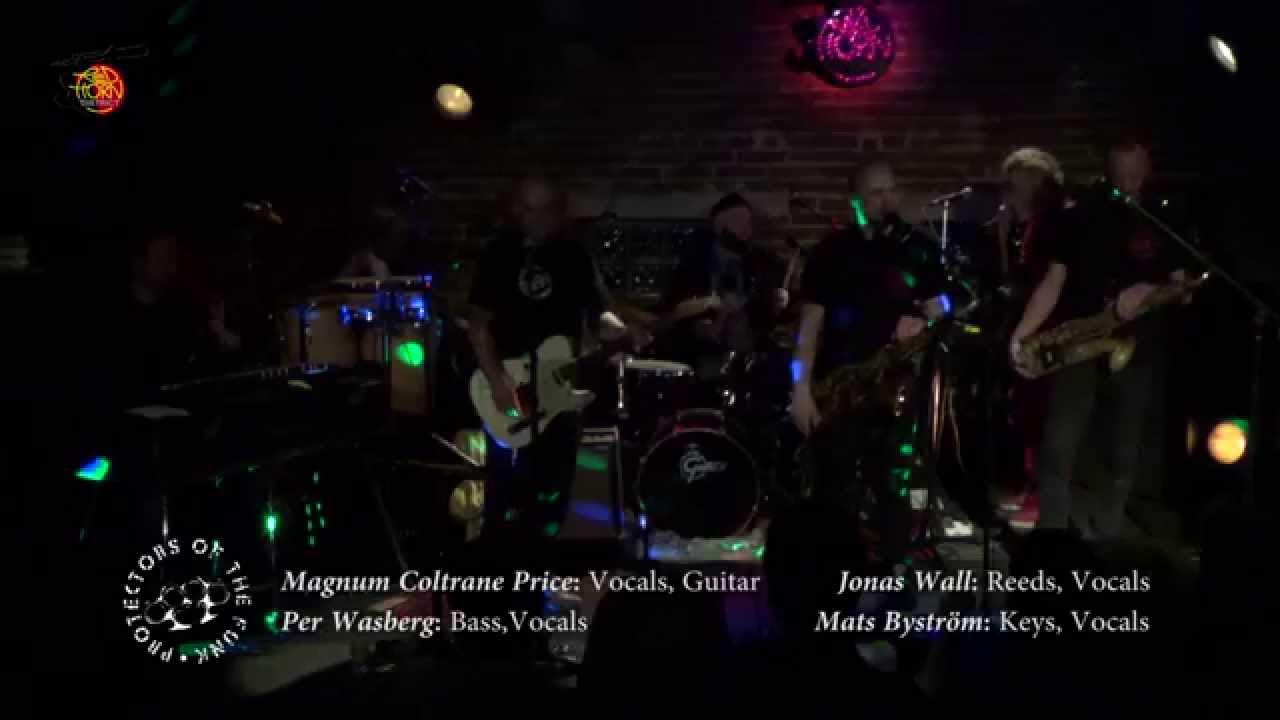 Magnum Coltrane Price (Sänger und Gitarrist bei Protectors of the Funk)