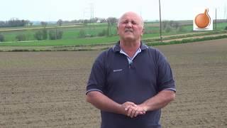 Pierwsze zabiegi herbicydowe w uprawie cebuli - Onion Leader 2017 (cz. I)