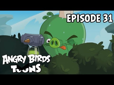Angry Birds Toons | Pig Plot Potion - S1 Ep31