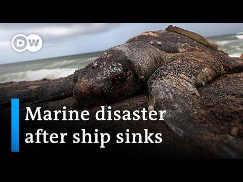 After ship sinks - Sri Lanka sees marine devastation | DW News