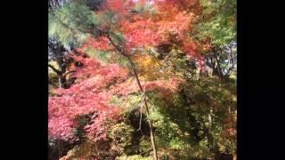 ここは、北九州市小倉北区の足立山。ドラマ「MOZU」で赤井が新谷に殺害...