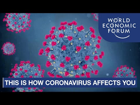 This is How the Coronavirus (COVID-19) Affects the Human Body