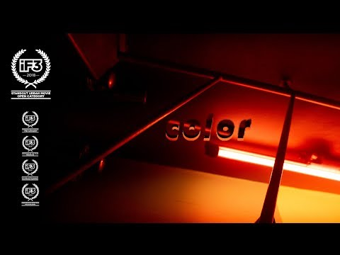 Color - A Film By The Bunch