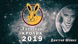 Гороскоп Кот/Кролик -2019. Астротиполог, Нумеролог - Дмитрий Шимко