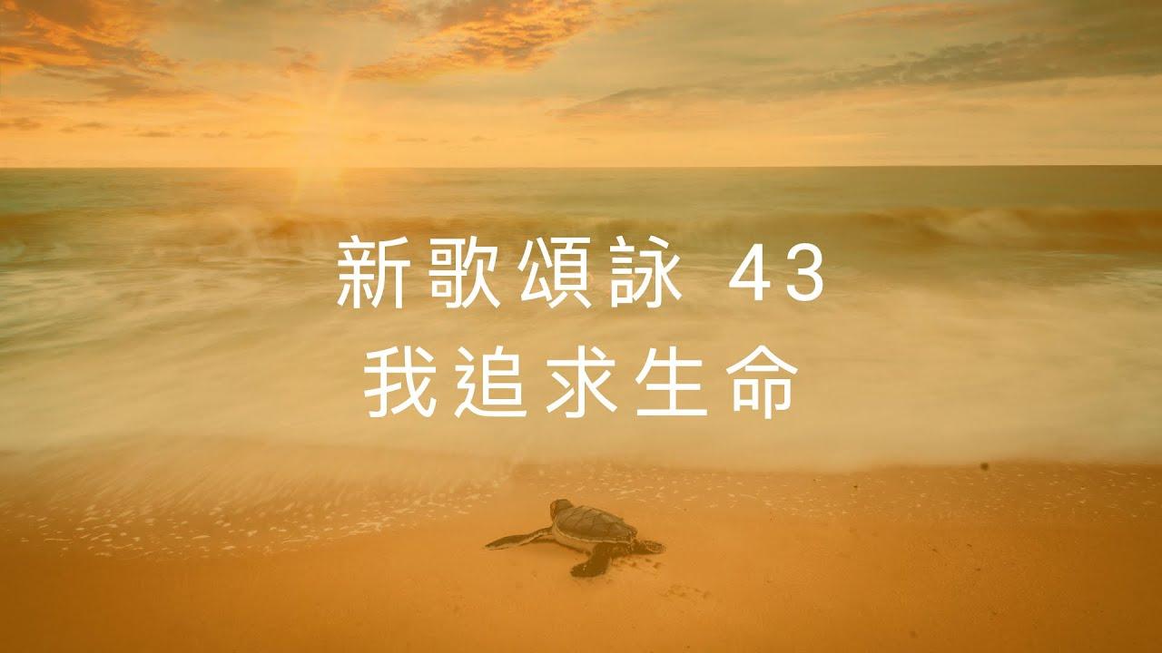 新歌頌詠43 我追求生命