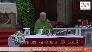 14 Luglio 2019 XV Domenica Tempo Ordinario Anno C Santa Messa ore 1830 OMELIA