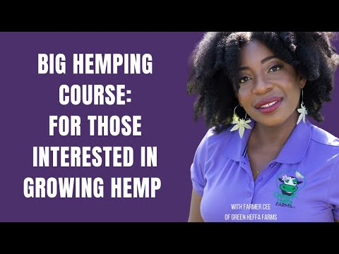 Big Hemping: How to Start a Small CBD Hemp Farm
