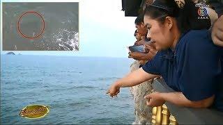 ชาวบ้านเฝ้ารอชมฝูงฉลามหัวบาตรหน้าวัดถ้ำเขาเต่า ไม่ผิดหวังได้ดูฉลามแบบใกล้ชิด