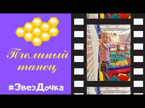 Танец Пчелы Миры