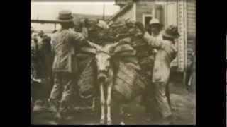 Intervención Norteamericana de 1916