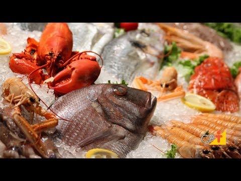 Clique e veja o vídeo Curso Processamento Artesanal de Pescado