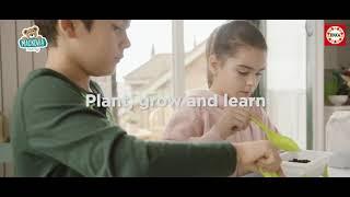 Malý záhradník - bylinky Strawberry-Mint-Basil Edu