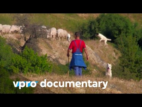 Greece is the answer - (vpro backlight documentary - 2013)