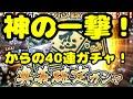 【忍ボル】【NARUTO×BORUTO忍者ボルテージ】【奥義確定ガチャ】【忍術確定ガチャ】【…