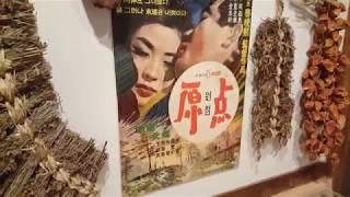서울약령시 한의약박물관 탐방  Korean Pharma…