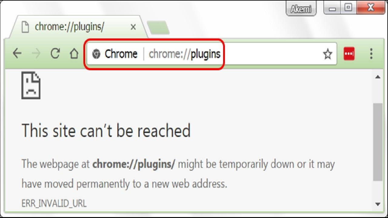 chrome// plugins