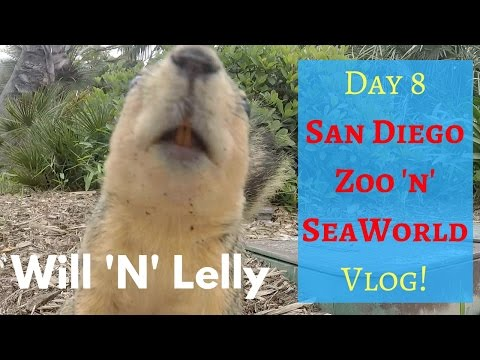 DisneyLand 'N' California Holiday May 2016 | Day 8 | San Diego Zoo 'N' SeaWorld