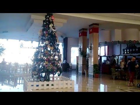 """شجرة الكريسماس """"مخبوزة"""" في فنادق الغردقة استعدادا لرأس السنة"""
