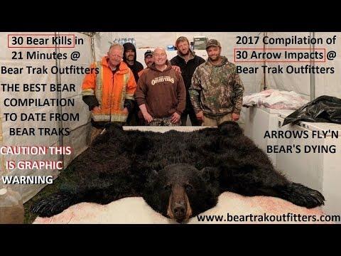 30 Bear arrowed in 21 minute Bear Bow Kill Compilaton @ Bear Trak bow kills