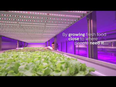 Our solution for City Farming - Philips GrowWise