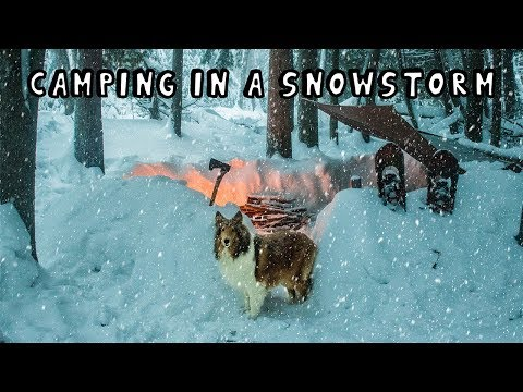 Winter Camping in a Snowstorm with My Dog