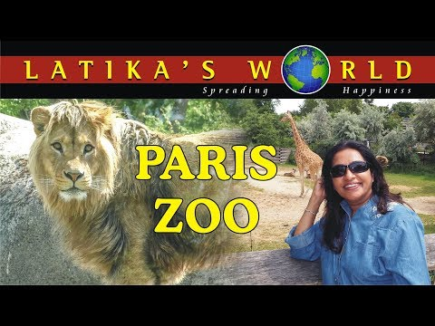 PARIS ZOO, FRANCE, LATIKAS WORLD