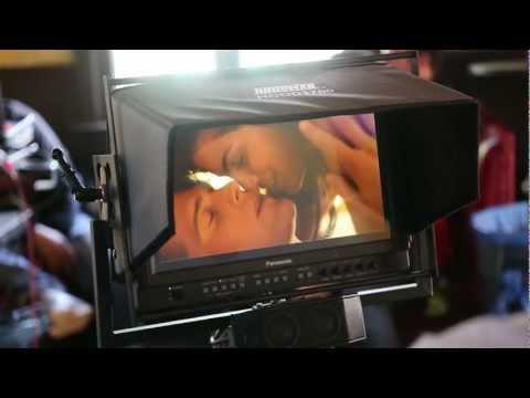 Aylar Lie in Basshunter's music video.