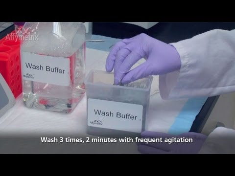 RNA In Situ Hybridization -- Washing Slides For QuantiGene ViewRNA ISH Tissue Assay