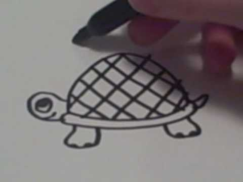 how-to-draw-a-cartoon-turtle