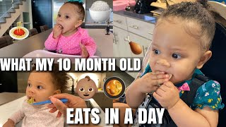 WHAT MY 10 MONTH OLD EATS IN A DAY